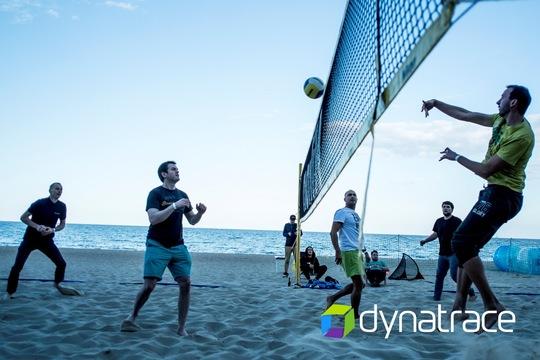 Dynatrace - company insight 4
