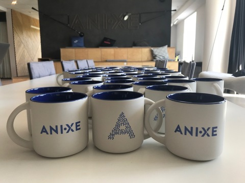 Anixe - company insight 1
