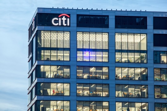 Citi - company insight 2