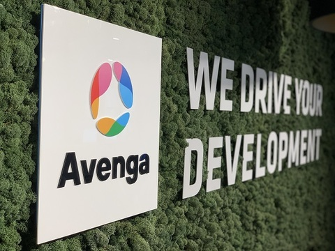 Avenga - company insight 4