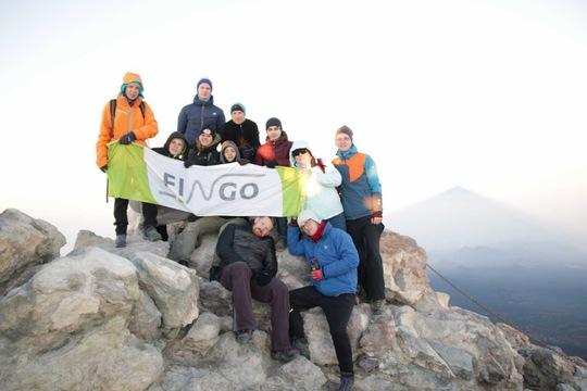 FINGO - company insight 4